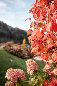 Impression Bioprodukte von Tiroler Naturbua